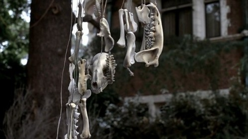 movie references / Animal bone mobile in the garden in opening sequence