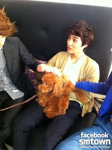 What is the name of Kai's dog?