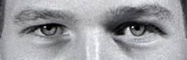 These eyes belong to: 