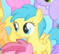 What is the name of this filly?
