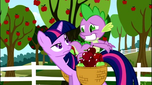 Why does Twilight look irritated with Spike?