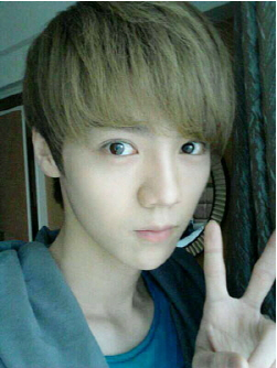In Korea which members is Lu Han shared the room with?
