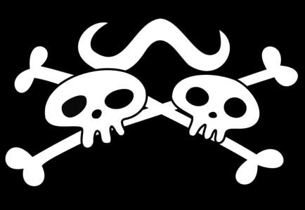 The Whitebeard alliance has 43 captains. From which Pirate Crew is this flag ?