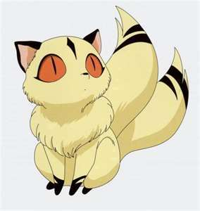 How many other two-tail cat (beside Kirara) have been shown in the episodes?