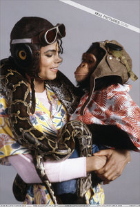 What´s the name of Michael´s Chimp?