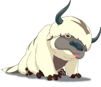 What animal is Appa mixed with?