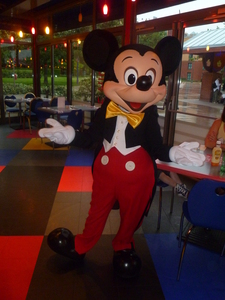 Which colour is Mickey`s favourite