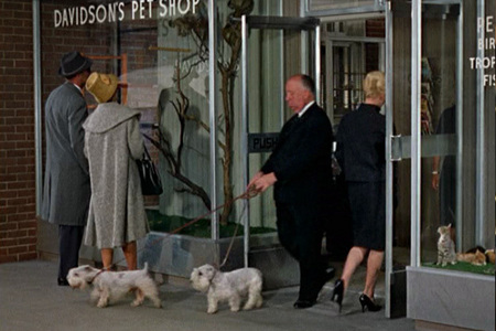 Can you name this Alfred Hitchcock film ?