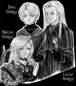 The Malfoy ancestor, Armand Malfoy arrived in Britain with William the Conqueror as part of the invading Norman army. Is this statement true または false?