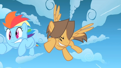 which of these ponies was not one of the cloudsdale jocks from