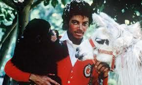 The only animal that Michael was afraid of is a __?__.