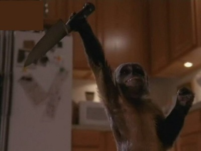 Who did save Craig from killer monkey?