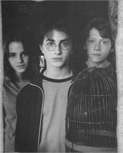 Is he a fan of Harry Potter ?