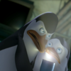 iLikeKowalski photo