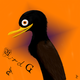 BirdG's photo