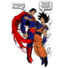 SUPERMAN N GOKU near_ty1222 photo
