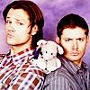 credit: ashesandwine || Jared&Jensen ashesandwine photo