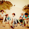 One Direction {credit:CullenSisters-X} Andressa_Weld photo