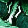 My Vans :) keninv photo