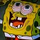 spongesrule's photo