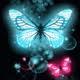 butterflyofwind