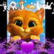 kittysoftpaws11's photo