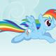 rainbowpony's photo