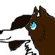 katealphawolf1's photo