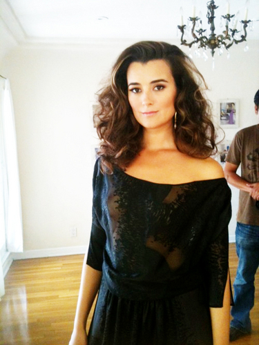 cote de pablo, yesterday photoset