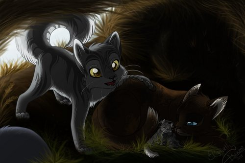 Graystripe in RiverClan