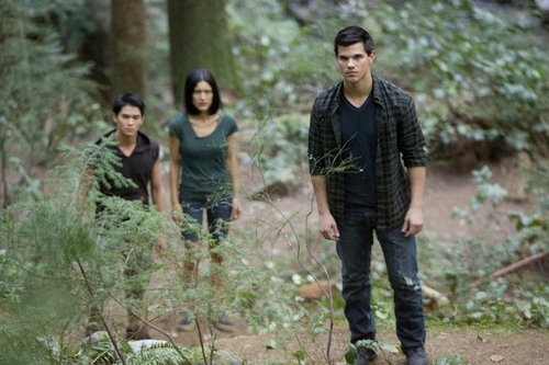 Taylor Lautner ( Jacob Black The भेड़िया Pack Team )