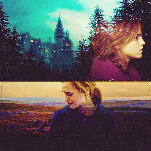 https://images5.fanpop.com/image/photos/25000000/hp-harry-potter-25027440-500-500.png