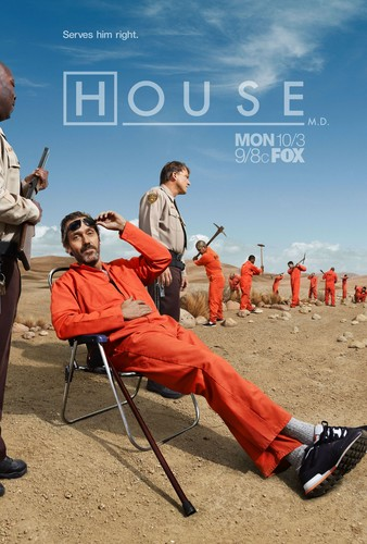 House Season 8 - HQ Poster