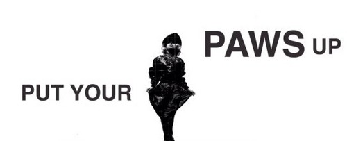 Put Your Paws Up! <3