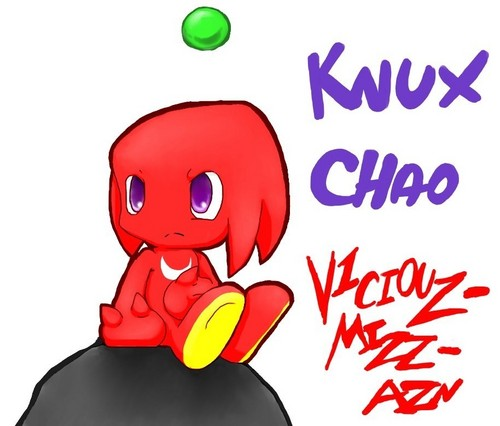 Chao Knux