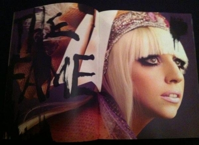 Super Lady Gaga Book by Leslie Kee