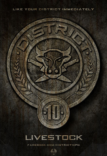District 10 (Livestock)
