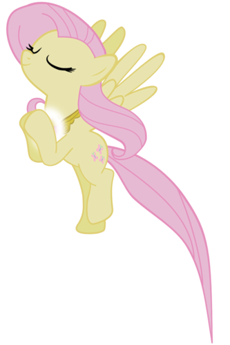 Element of the Harmony : Fluttershy