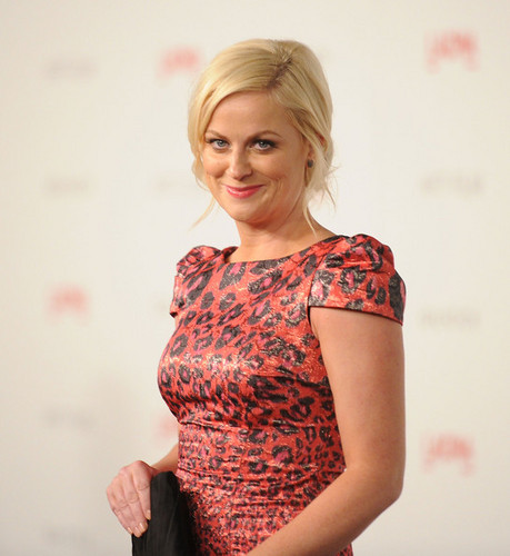 Amy Poehler attends LACMA Art