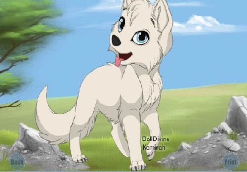 neera as a puppy