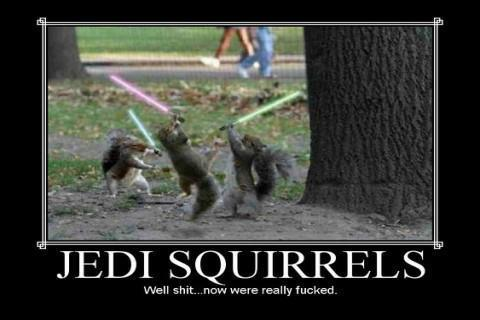 Jedi Squirrels :D