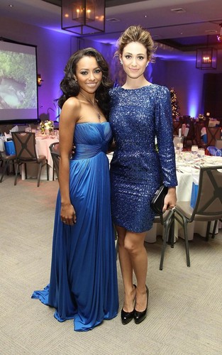 kAT Graham - The Ripple Effect Charity avondeten, diner - 10.12.11
