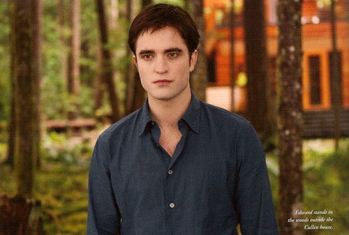 HQ Scans of Breaking Dawn Part 1 Movie Companion