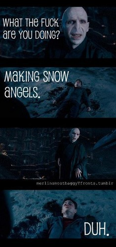 Epic Voldemort Funnies!