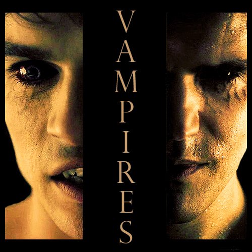 The vampire Salvatore brothers!