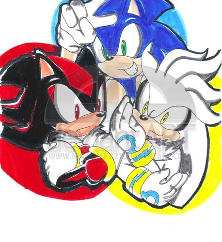team hedgehog sonic heroes