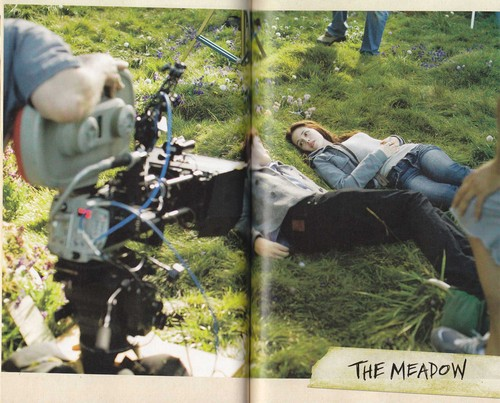 Scans of Twilight Movie Companion 의해 Catherine Hardwicke