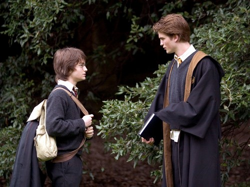 Cedric and Harry