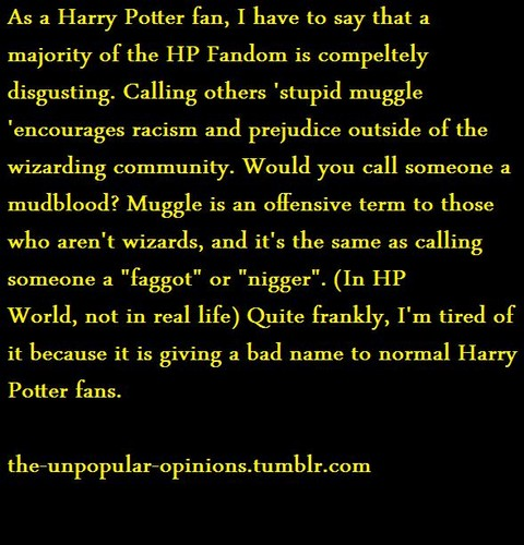 Unpopular Opinion: Muggles