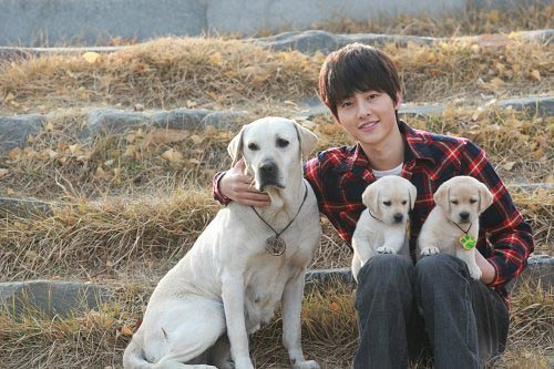 Song Joong-ki and dog in the sequel to corazón Is